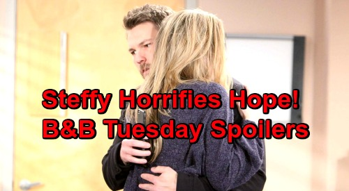 The Bold and the Beautiful Spoilers: Tuesday, January 29 - Hope's Horrified By Steffy's Adoption Plan - Flo Feels Guilty