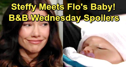 The Bold and the Beautiful Spoilers: Wednesday, January 16 - Steffy Meets Flo's Baby, Falls In Love - Will Struggles With Dad Issues