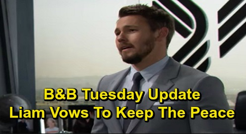 The Bold and the Beautiful Spoilers: Tuesday, December 3 Update – Sally Proposes Quickie Vegas Wedding – Liam Says No More Brother Battles