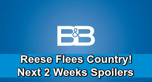 The Bold and the Beautiful Spoilers Next 2 Weeks: Hope's Instant Love for 'Phoebe' – Reese Flees Country Over Baby Swap