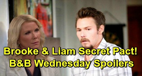 The Bold and the Beautiful Spoilers: Wednesday, April 3 – Liam Makes Secret Pact with Brooke – Sally and Quinn Clash