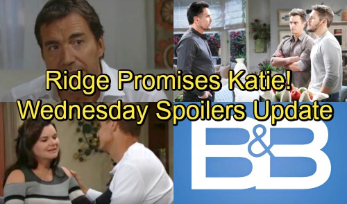 The Bold and the Beautiful Spoilers: Wednesday, September 26 Update - Ridge Vows To Help Katie - Bill Pleads With Sons For Support