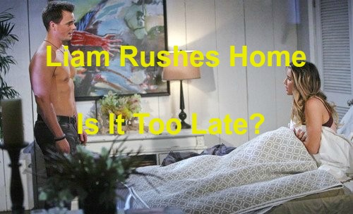 The Bold and the Beautiful (B&B) Spoilers: Liam Rushes Home From Australia - Steffy Already Cheating With Wyatt?