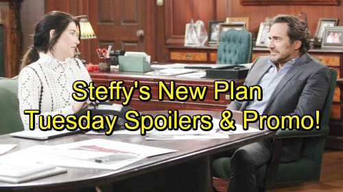 The Bold and the Beautiful Spoilers: Tuesday, February 20 – Hope's New Challenge – Brokenhearted Steffy Needs Ridge's Advice