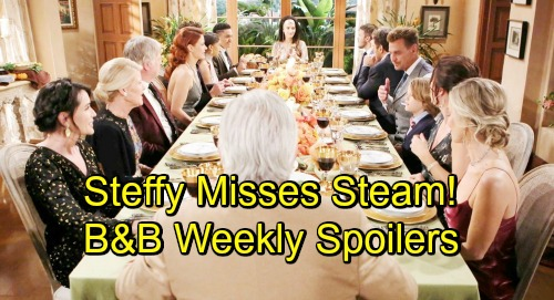The Bold and the Beautiful Spoilers: Week of November 19-23 – Hidden Agendas, Painful Admissions and Troubling Secrets