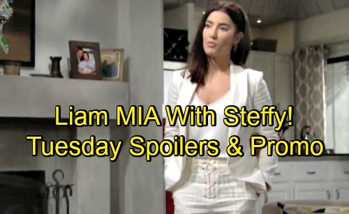 The Bold and the Beautiful Spoilers: Tuesday, August 28 – Hope's Painful Discovery, Steffy & Kelly Comes First For Liam