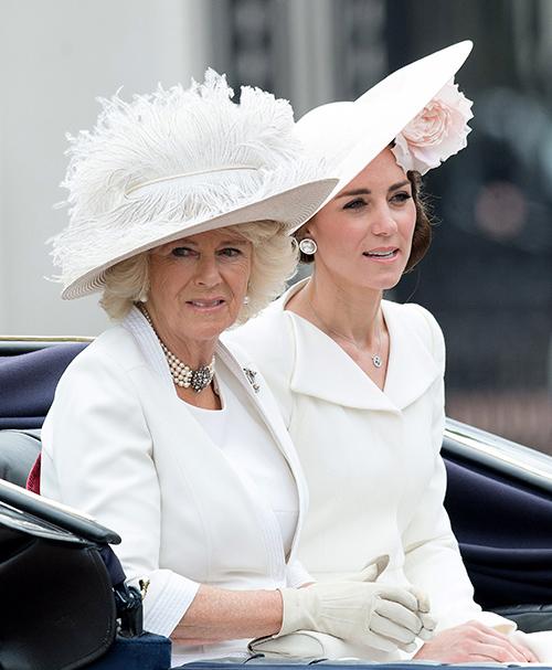 Camilla Parker-Bowles' Scandalous Secrets Unveiled: Vengeful Plot To End Princess Anne's Andrew Parker-Bowles Affair Exposed?
