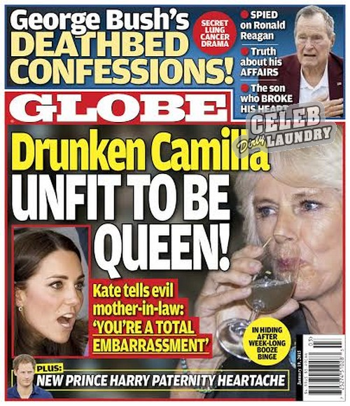 "GLOBE: Camilla Parker-Bowles Unfit To Be Queen - Kate Middleton Calls Her ""A Total Embarrassment"" (PHOTO)"