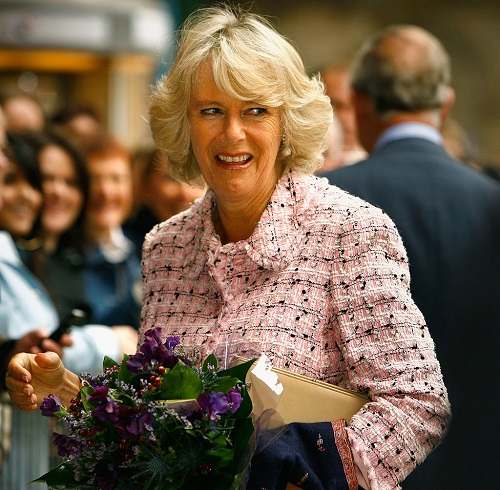 Camilla Parker-Bowles Humiliated in Cringe-worthy Clip: Forced to Knight Drunk Farmer