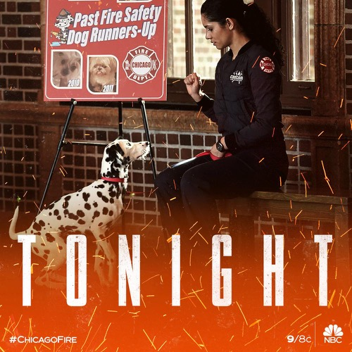 "Chicago Fire Recap 01/16/19: Season 7 Episode 11 ""You Choose"""