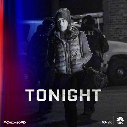 """Chicago PD Recap 01/15/20: Season 7 Episode 11 """"43rd and Normal"""""""