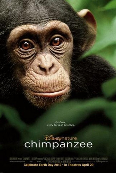 Disneynature Impacts the Jane Goodall Institute Conservation Program