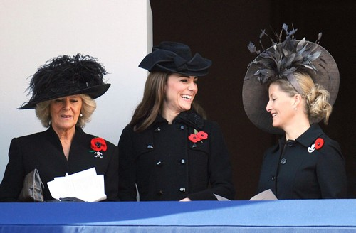 Kate Middleton and Prince William Not Invited to Countess Of Wessex, Sophie's, Doctor Who Party At Buckingham Palace?