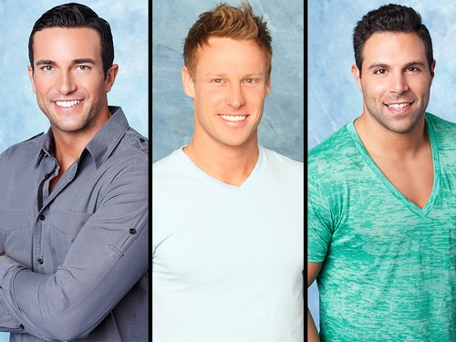 Bachelor In Paradise 2015 Spoilers: Official Cast List Here, Find Out Who Is Returning For Season 2