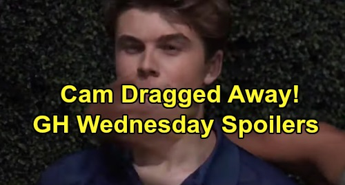 General Hospital Spoilers: Wednesday, September 4 – Liz Faces Crushing Andre Blow – Cam Dragged Away - Peter Challenges Robert