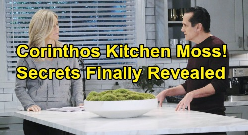General Hospital Spoilers: The GH Corinthos Kitchen Moss - Executive Producer Frank Valentini Speaks Out, Explains Its Secrets