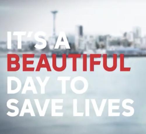 "Grey's Anatomy Recap 11/8/18: Season 15 Episode 7 ""Anybody Have a Map?"""