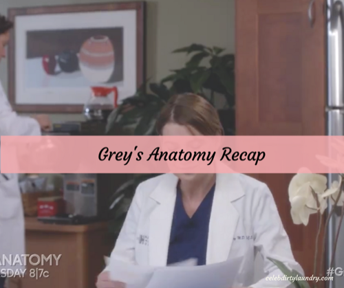 "Grey's Anatomy 3/9/17 Recap: Season 13 Episode 15 ""Civil War"""
