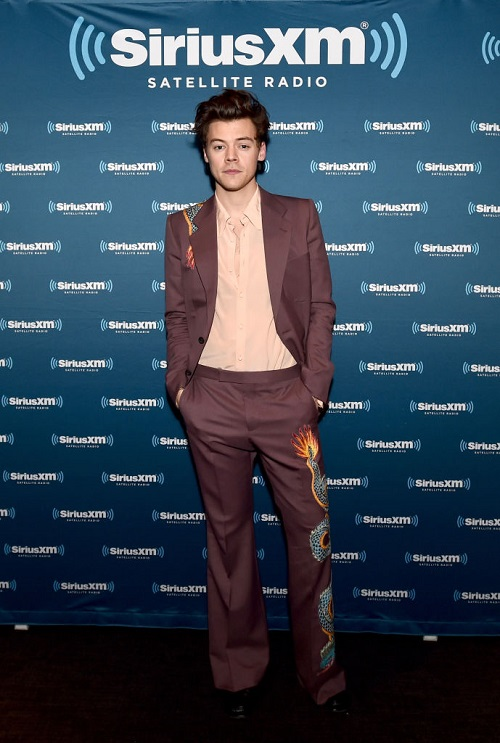 Harry Styles Humiliated: Dumped By Food Blogger Tess Ward