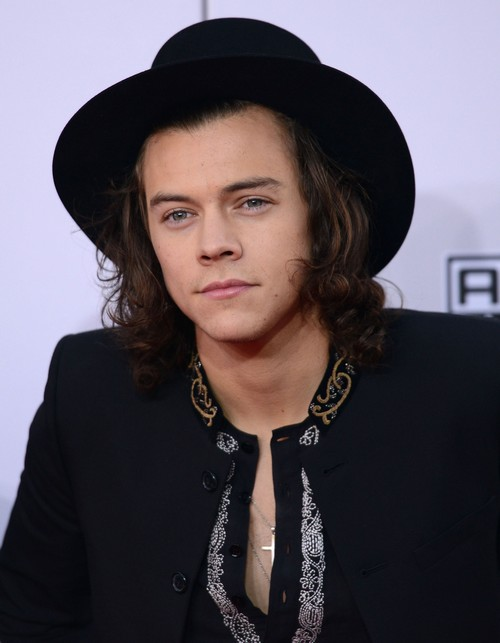 Taylor Swift and Harry Styles Go Public At American Music Awards - Couple Dating Again?
