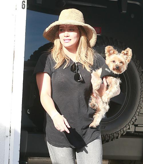 Hilary Duff Struggles To Slim Down Despite Brutal Exercise And Diet Regimen?