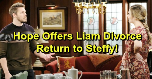 The Bold and the Beautiful Spoilers: Hope Offers Liam Divorce and a Return To Steffy and Kelly