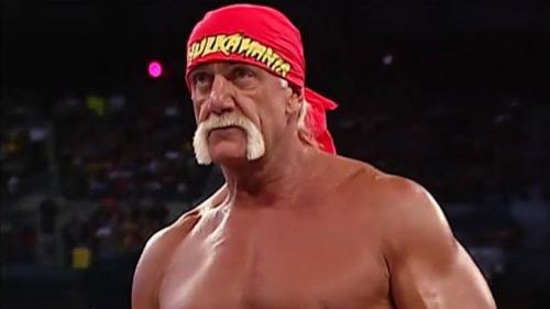 Hulk Hogan Likes His Family