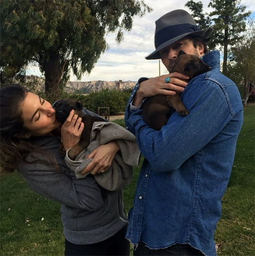 Ian Somerhalder Responds To Nina Dobrev And Austin Stowell's Potential Engagement With Adorable Nikki Reed & Puppy Pic!