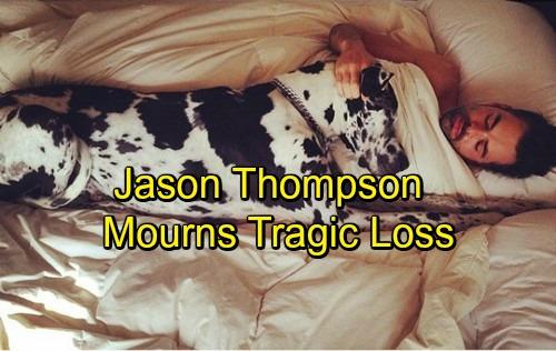 jason-thompson-dog-top