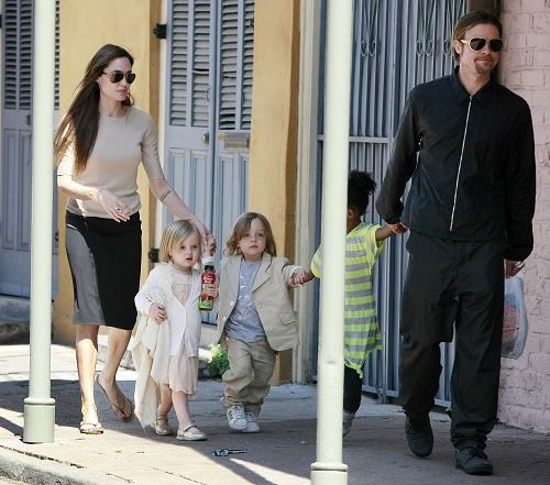 Brad Pitt and Angelina Jolie Divorce On Hold For New Olive Oil Business Venture?