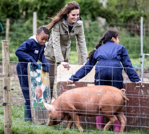 kate-middleton-farm