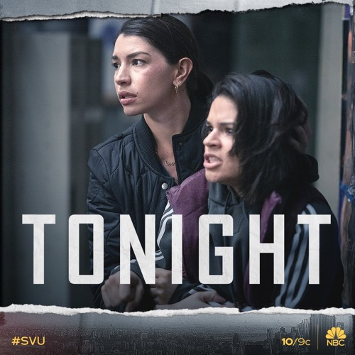 "Law & Order SVU Recap 02/06/20: Season 21 Episode 13 ""Redemption In Her Corner"""
