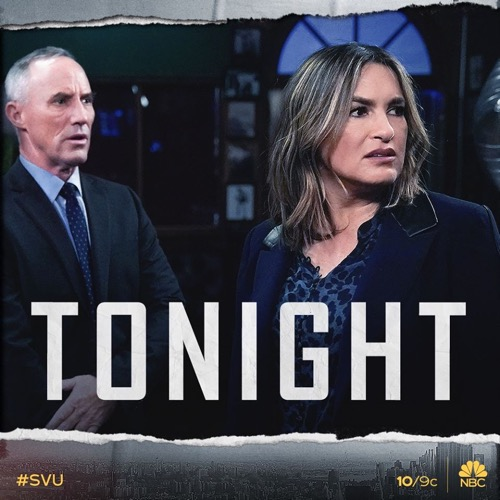 "Law & Order SVU Recap 01/30/20: Season 21 Episode 12 ""The Longest Night Of Rain"""