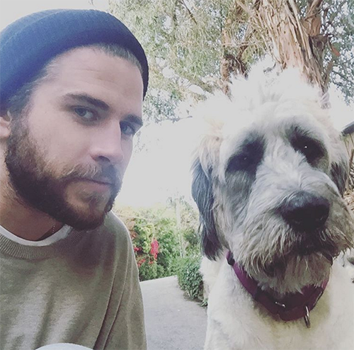 Liam Hemsworth And Miley Cyrus Not Engaged: Liam Reveals Truth In Interview, Couple's Second Breakup Looms?