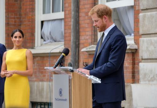 Prince Charles' Friend Nicky Haslam Slams 'Frightfully Common' Meghan Markle