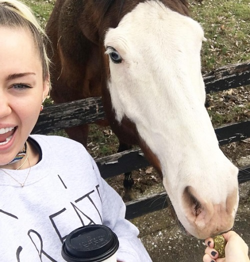Miley Cyrus Desperate To Clean Up Her Image And Launch Country Music Career