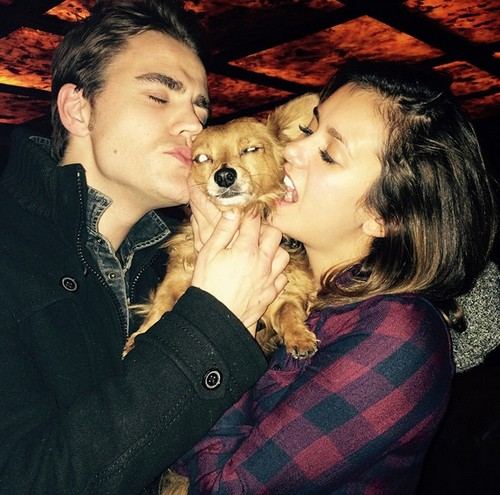 Ian Somerhalder Crazy Jealous Over Nina Dobrev's Secret Boyfriend: Vampire Diaries Star Wants Nina Back?