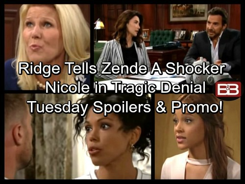 The Bold and the Beautiful Spoilers: Ridge Makes Zende an Offer He Can't Refuse – Nicole in Denial About Inability To Conceive