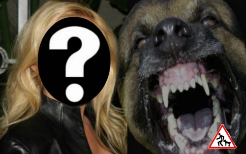 The Young and the Restless Spoilers: Soap Star Suing After Vicious On-Set Dog Attack