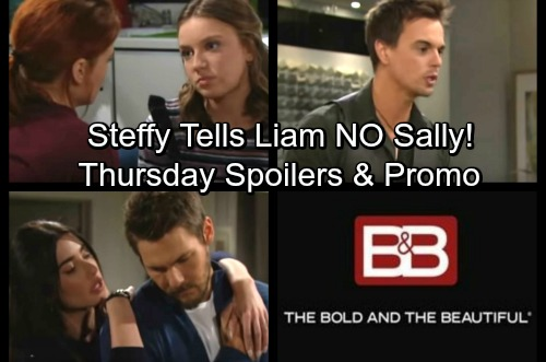 The Bold and the Beautiful Spoilers: Thursday, November 9 - Steffy Pushes Liam to Cut Ties with Sally – Sally Admits Love to Coco