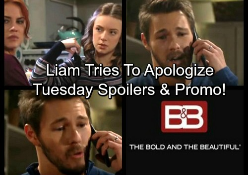 The Bold and the Beautiful Spoilers: Tuesday, November 14 - Sally Dreams of Steffy and Liam's Breakup