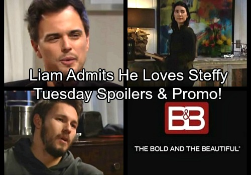 The Bold and the Beautiful Spoilers: Liam Confesses Loving Steffy to Hope – Wyatt Suspects Katie's Motives