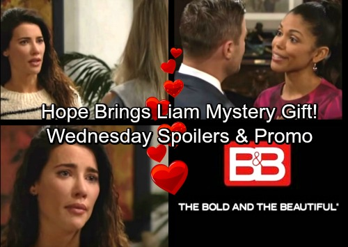 The Bold and the Beautiful Spoilers: Wednesday, February 14 – Hope Consoles Liam After Making a Special Delivery