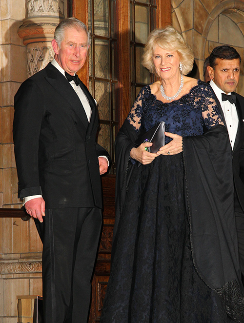 Camilla Parker-Bowles Schemes Against Kate Middleton – Prince Charles Pawn In Fight For The Throne