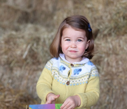 Prince William And Kate Middleton Appalled: Online Bullies Target Princess Charlotte's Birthday Photo