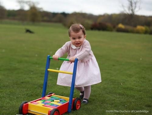 Kate Middleton Family War: Camilla Parker-Bowles Despises Carole Middleton's Grandchildren Greed
