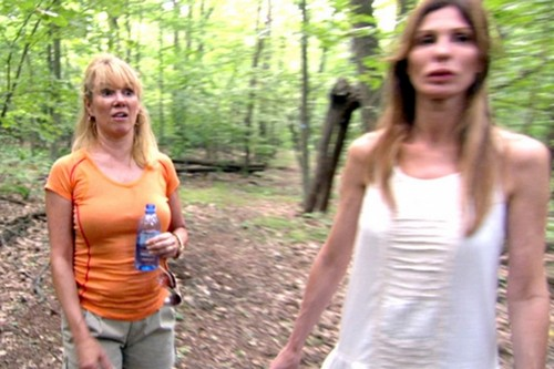 "The Real Housewives of New York RECAP 5/13/14: Season 6 Episode 10 ""Bon Voyage Ramona"""