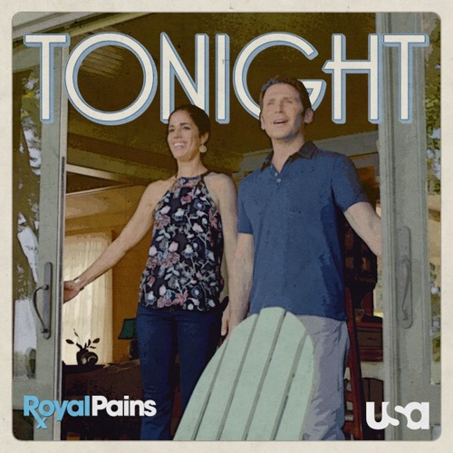 "Royal Pains Recap 6/22/16: Season 8 Episode 6 ""Home Sick"""