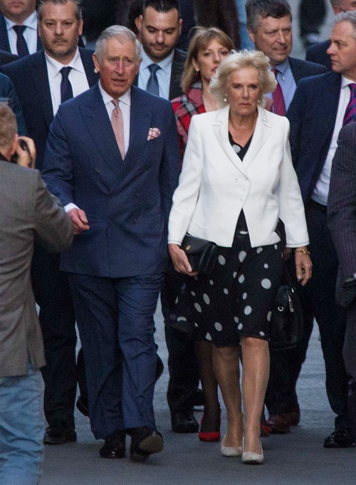 Camilla Parker-Bowles Crushed: Prince Charles Won't Celebrate Wedding Anniversary?