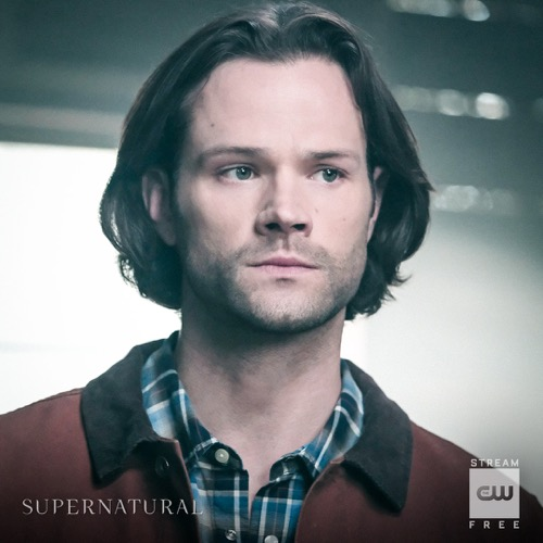 "Supernatural Recap 01/31/19: Season 14 Episode 12 ""Prophet and Loss"""
